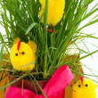 Three easter chickens near a grass bush - Stock Photo