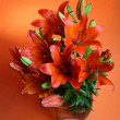 Lilly on a orange background. Summer flowers - Stock Photo