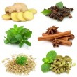 Collecton of fragrant spices - Stockfoto
