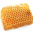 Honeycomb close up - Stock Photo