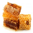 Stock Photo: Honey honeycombs