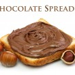 Chocolate spread and filbert nuts — Stock Photo
