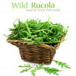 Wild rucola — Stock Photo
