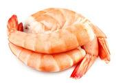 Shrimps close up — Stock Photo