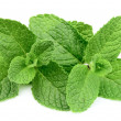 Sweet mint closeup — Stock Photo #9350770