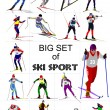 Big set of Ski sport colored silhouettes. Vector illustration — Stock Vector