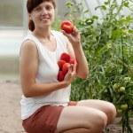 Woman picking tomato — Stock Photo #10519978
