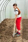 Female gardener spading in hothouse — Stock Photo
