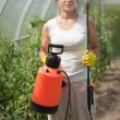Female gardener with garden spray — Stock Photo #10520018