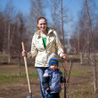 Woman with her son planting the tree — 图库照片 #10528472
