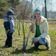 Woman and boy planting tree — Stock Photo #10528478