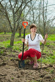 Happy woman planting tree — Stock Photo