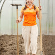 Mature gardener    in greenhouse - Stock Photo