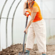 Stock Photo: Mature gardener in hothouse