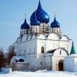 Cathedral of the Nativity of the Theotokos at Suzdal — Stock Photo