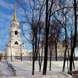 Assumption cathedral  at Vladimir in winter — ストック写真