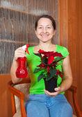 圣诞星花的女人 — 图库照片