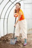 在温室大棚中的成熟园丁 — 图库照片