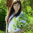 Female gardener planting tree - Stock Photo
