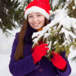 Woman in christmas hat near spruce — Stock Photo #8094489