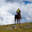 Rider on horseback — Stock Photo #8095486
