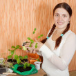 Stock Photo: Womwith seedlings