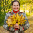 Woman against autumn landscape - Stock Photo