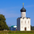 Church of the Intercession on River Nerl - Stok fotoğraf