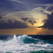 Wave during storm in sunset — Stock Photo