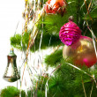 Part of Christmas fir tree — Stock Photo