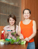 Two women with sprouts — Stock Photo