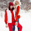 Foto Stock: Two girls in winter
