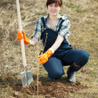 Stock Photo: Famale farmer planting sprout