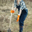 Famale farmer  planting  sprouts - Stockfoto