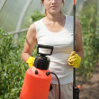 Female gardener   with  garden spray - Stockfoto