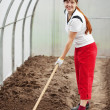 Woman working with rake - Stockfoto