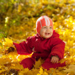 Stock Photo: Toddler in autumn park