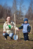 Woman with boy planting tree — Stock Photo