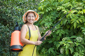 Mature woman spraying plant — Stock Photo
