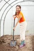 Female gardener spading in greenhouse — Stock Photo