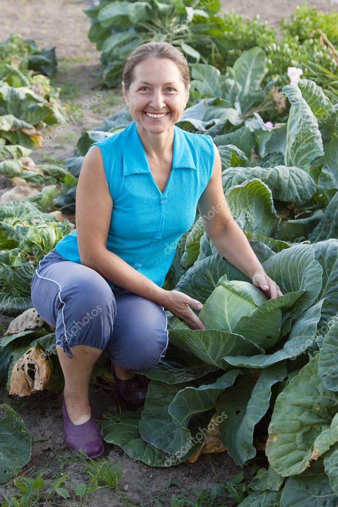 Mature woman working  in plant of cabbage — Stock Photo #9007713