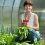 Smiling woman picking radish — Stock Photo #9890969