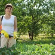 Woman spraying potato plant - Stock Photo