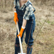 Stock Photo: Female farmer planting shrubbery