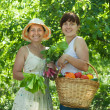 Women with vegetables harvest in garden — Stock Photo