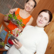 Women with seedlings — Stock Photo