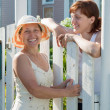 Stock Photo: Happy women near fence wicket
