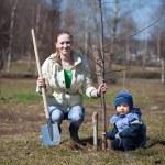 Мать и сын, посадить дерево — Стоковое фото #9892338