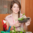 Female gardener with sprouts — Stock Photo