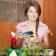 Female gardener with  sprouts - Foto Stock